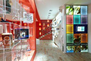 Borecet múzeum