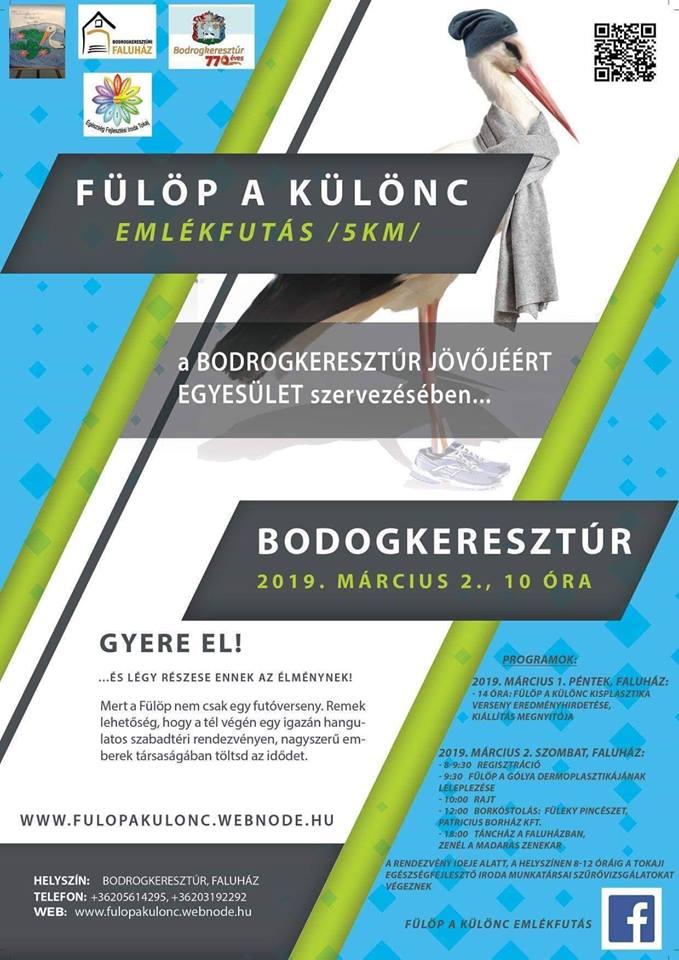 fulop 2019