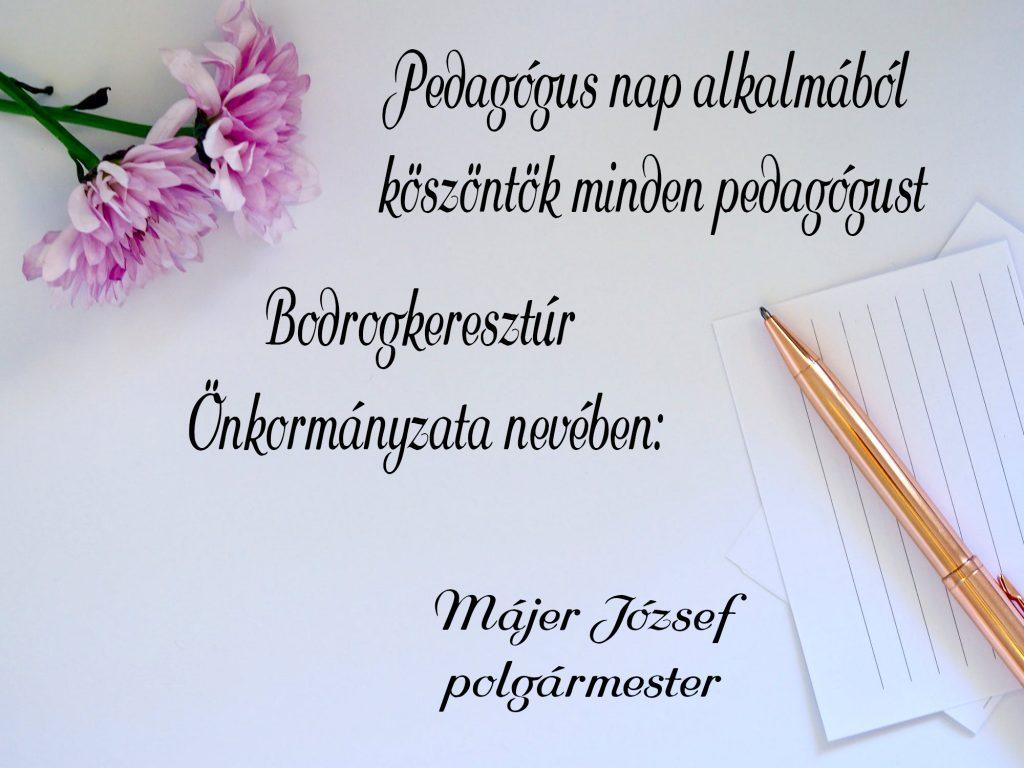 pedagogusnap