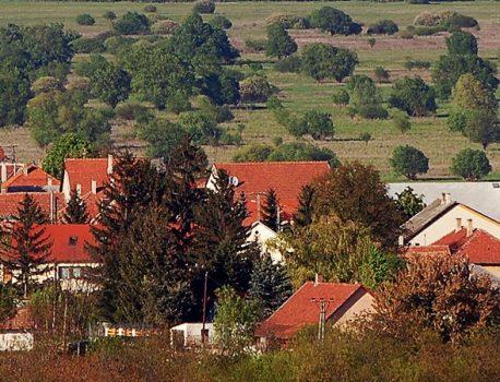 Egyházak